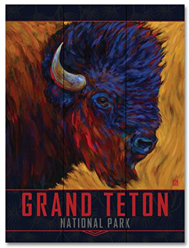 - Grand Teton Red Beard Bison Wood Art Print by Kari Lehr (18