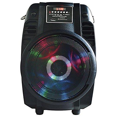 Karaoke Club System (MAX POWER MPD65L Karaoke DJ speaker system)