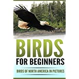 Birds for Beginners: Birds of North America in Pictures