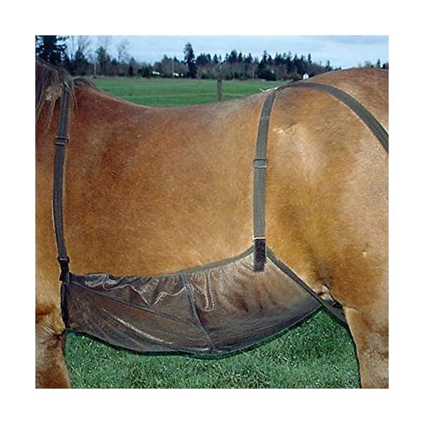 Centeraly Cover Protettiva Cavallo Addome Outdoor Rete Tappeto Fly Confortevole Regolabile Antigraffio Bite Anti-zanzara… 2 spesavip