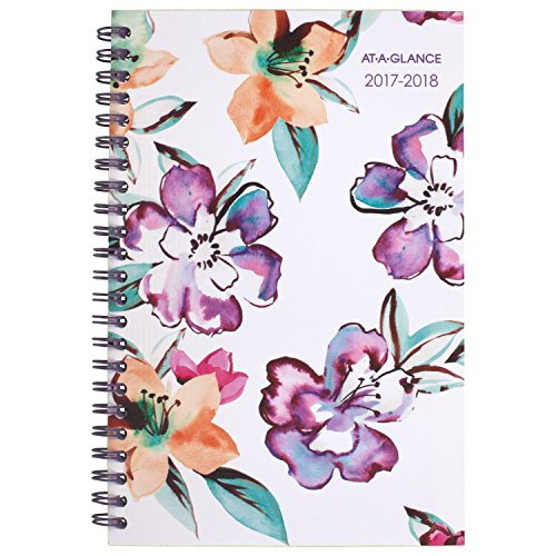 "AT-A-GLANCE Academic Weekly / Monthly Planner, July 2017 - June 2018, 4-7/8"" x 8"", June Design(1012-200A)"