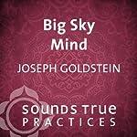 Big Sky Mind   Joseph Goldstein