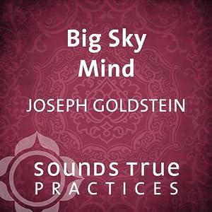 Big Sky Mind Speech