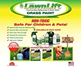 Lawnlift Grass and Mulch Paints Ultra Concentrated