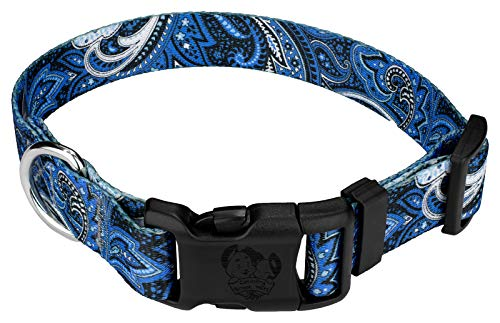 Country Brook Petz | Blue Paisley Deluxe Dog Collar (Medium) (Best Collar For Pugs)