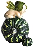 Top Collection Miniature Fairy Garden and Terrarium Fairy Baby on Green Gourd Statue