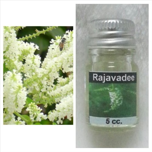 Butterfly Bush (Rajawadee) Scent Thai Spa Aroma Pure Essential / Fragrance Oil for Spa Bath, Candle Lamp Burner, 5ml by Prinxess16