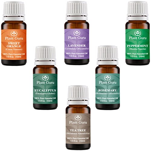 Price comparison product image Essential Oil Variety Set Kit - 6 Pack - 100% Pure Therapeutic Grade Oils 10ml. Includes Peppermint,  Lavender,  Sweet Orange,  Rosemary,  Eucalyptus & Tea Tree