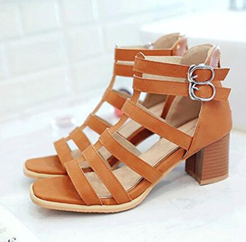 Toe Brown Easemax Sandals Buckles Open Gladiator Womens Mid Trendy Zipper Heel Strappy Chunky wqBYw