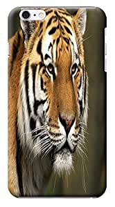 HUAHUI Tiger Cases Design Cell Phone Cases For iPhone 6