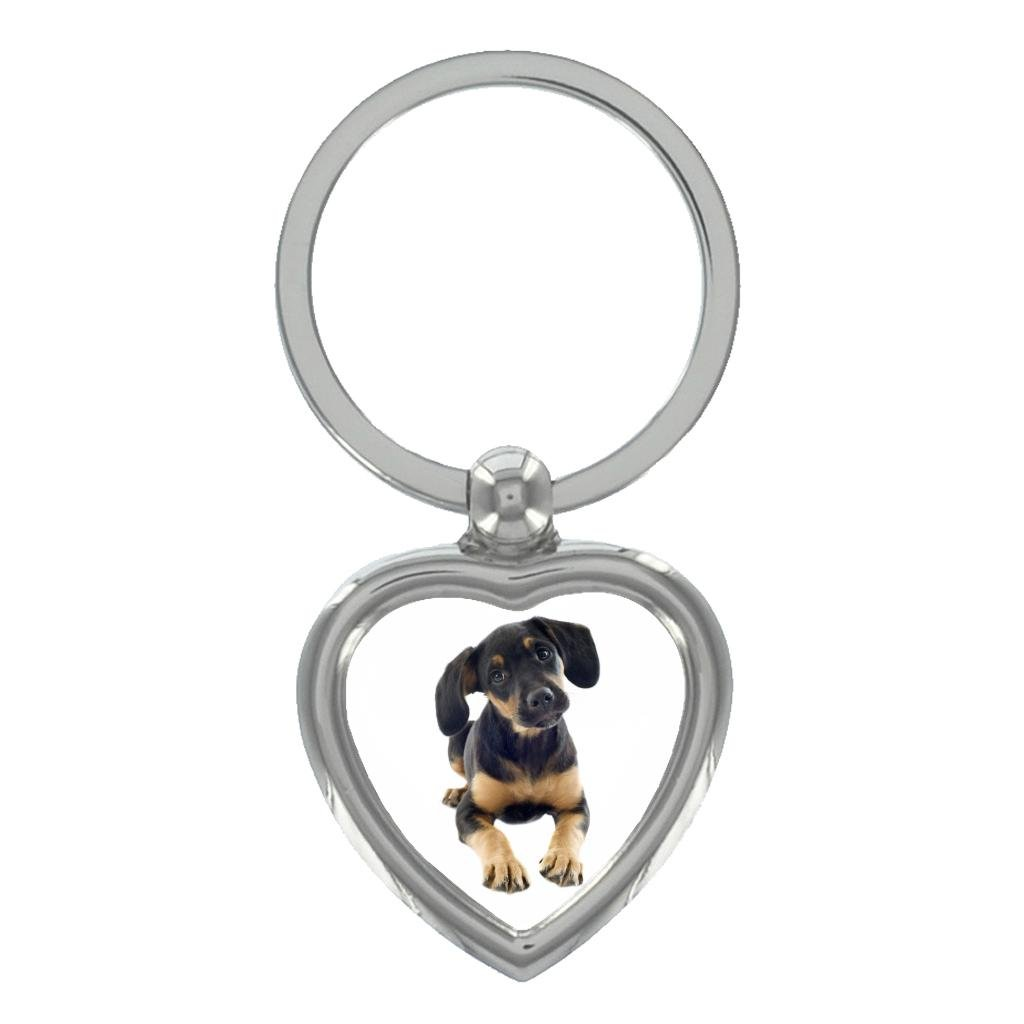 Doberman Cachorro Imagen en Forma de Corazón Llavero en Caja ...