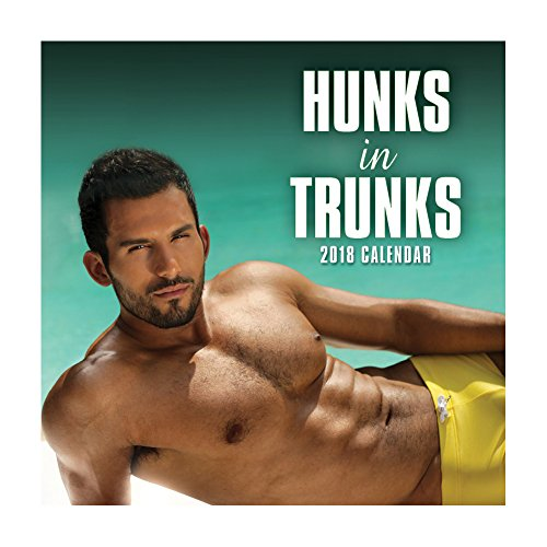2018 Hunks in Trunks Calendar - 12 x 12 Wall Calendar - With 210 Calendar Stickers