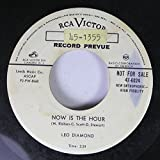 LEO DIAMOND 45 RPM NOW IS THE HOUR / SHTIGGY BOOM