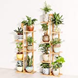 Bamboo 5 Tier 6 Potted Plant Stand Rack Multiple