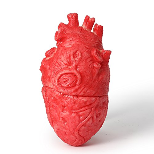 ONEDONE Fake Bloody Heart Body Organ Parts Halloween Horror Props Haunted House Party Decor -