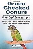 Green Cheeked Conure. Green Cheek Conures as pets. Green Cheek Conures Keeping, Pros and Cons, Care, Housing, Diet and Health.