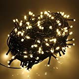 RPGT 1000 LED 31V Safe Voltage Green Cable Warm White String Fairy Lights with 8 Light Effects, Ideal for Christmas Trees, Xmas,Party,Wedding Events, e