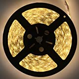 Dephen 5050SMD LED Strip Light Outdoor LED Rope Light IP65 Waterproof String Light LED Tape 16.4 Ft/5M Warm White Lighting Strips Festival Wedding Party Christmas Halloween Decorative LED Lighting