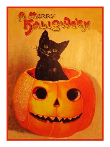 Orenco Originals Pumpkin Black Cat Halloween Counted Cross Stitch Pattern -