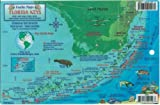 Florida Keys Dive Map and Reef Creatures Guide Franko Maps Laminated Fish Card