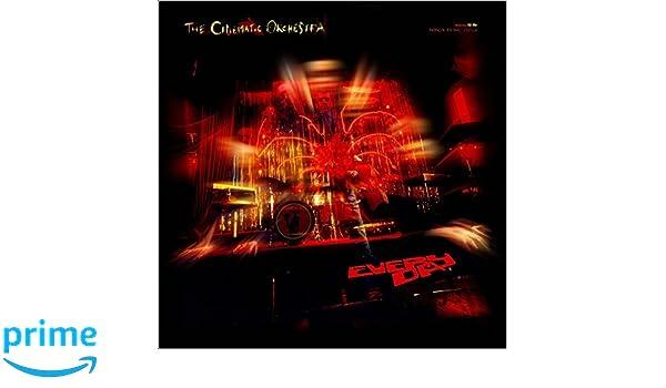 Everyday: the Cinematic Orchestra: Amazon.es: Música