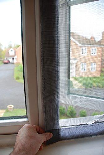 Protector de ventana para gatos de gato plano, paquete único estándar: Amazon.es: Productos para mascotas
