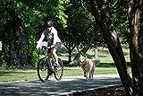 Petego Cycleash Universal Bicycle Leash - Gray
