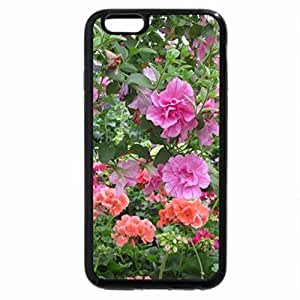 iPhone 6S Plus Case, iPhone 6 Plus Case, Greenhouse photography day 28