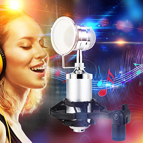 Kaxu Professional Instrument Condenser Pro Audio BM3000 Microphone Sound Studio Dynamic Mic +Shock Mount for Studio Recording & Broadcasting (Silver)