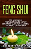 FENG SHUI: for Beginners! From Dummies to Expert Beginners Guide for Learning the Basics of Feng Shui (room decorating ideas, feng shui map, feng shui house, feng shui for home, feng shui decorating)