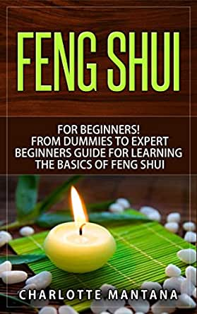 feng shui for beginners from dummies to expert beginners guide for