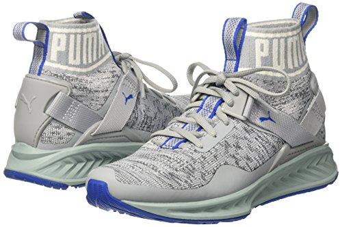 Chaussures Course Unisexe Gris quarry asphalt Ignite Blue Evoknit De Puma lapis 12 X6tYxqwdq