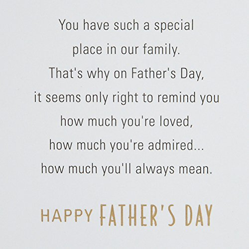 Hallmark Father's Day Greeting Card for Son-In-Law (Special Place in Our Family) Photo #5