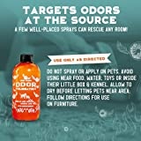 Angry Orange Pet Odor Eliminator for Dog and Cat