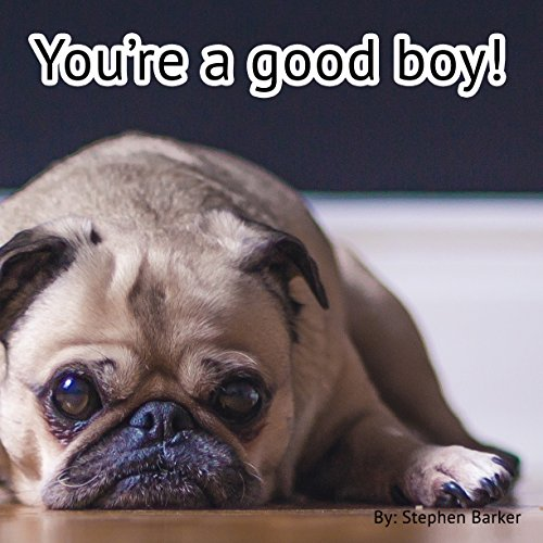 You're a good boy! (English Edition)