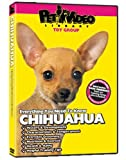 CHIHUAHUA DVD: Everything You Should Know!  Dog & Puppy Training Bonus Included