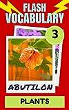 Flash Vocabulary #3: 101 Plants (Flash Vocabulary Builders)