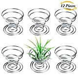 #4: Aneco 12 Pieces Air Plant Holder Air plant Tillandsia Tabletop Container Stainless Steel Wire Stand Plant Display Racks, Silver
