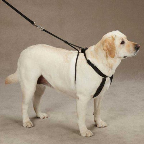 Guardian Gear Anti Pull Harness X-Large Black