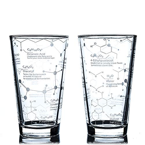 Greenline Goods Beer Glasses – 16 oz Pint Glass (Set of 2) – Science of Beer Glassware – Etched with Beer & Hops…