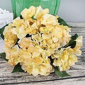 Lannu Artificial Silk Hydrangea Flowers Fabric Floral Natural Fake Hydrangea Flower Wedding Home Flower Wall Decor Pack 2 ... (7 Heads Champagne) 4