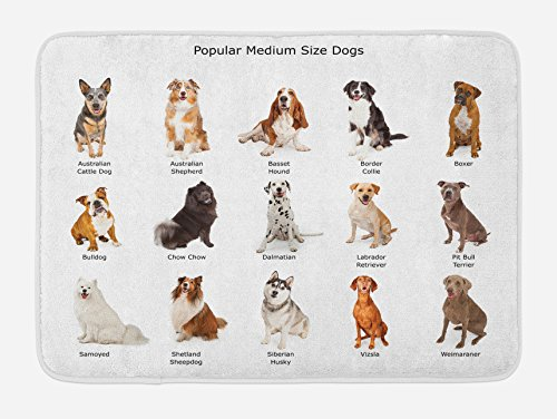 Ambesonne Dog Bath Mat, Group Different Puppy Breeds Family Type Species Dalmatian Husky Bulldog Image Print, Plush Bathroom Decor Mat with Non Slip Backing, 29.5
