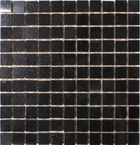 Epoch Tile AB1X1 1x1 Polished Granite, Absolute Black