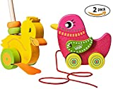 Wooden Push Along Toy And Pull Along Toy Bird For Toddler Toy By Dragon Drew (2 Pack)