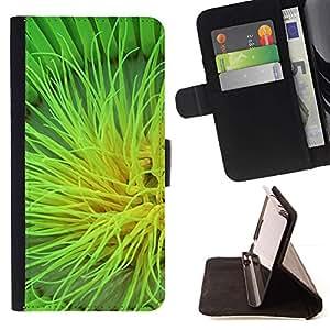 For Samsung Galaxy S5 V SM-G900 Case , Planta Naturaleza Forrest Flor 105- la tarjeta de Crédito Slots PU Funda de cuero Monedero caso cubierta de piel