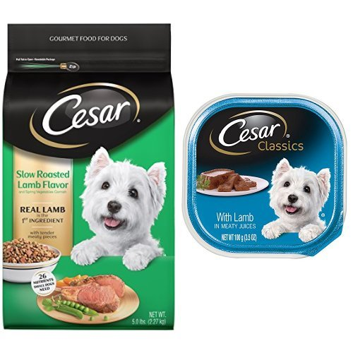 Cesar Small Dog Food Variety Pack with 5 lb bag of Slow Roasted Lamb Dry Food and 24 Trays of Lamb Wet (Gourmet Garnish Tray)