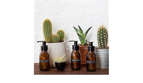Kit de viaje de tres botellas de vidrio ámbar Marrón dispensador de jabón en 100 ml con pizarra etiquetas por kuishi: Amazon.es: Hogar