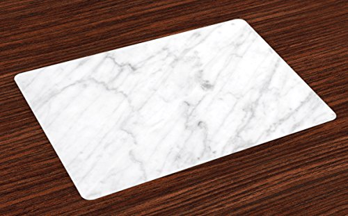 Ambesonne Marble Place Mats Set of 4, Carrara Marble Tile Surface Organic Sculpture Style Granite Model Modern Design, Washable Fabric Placemats for Dining Room Kitchen Table Decor, Dust Grey White - Dining Table Model