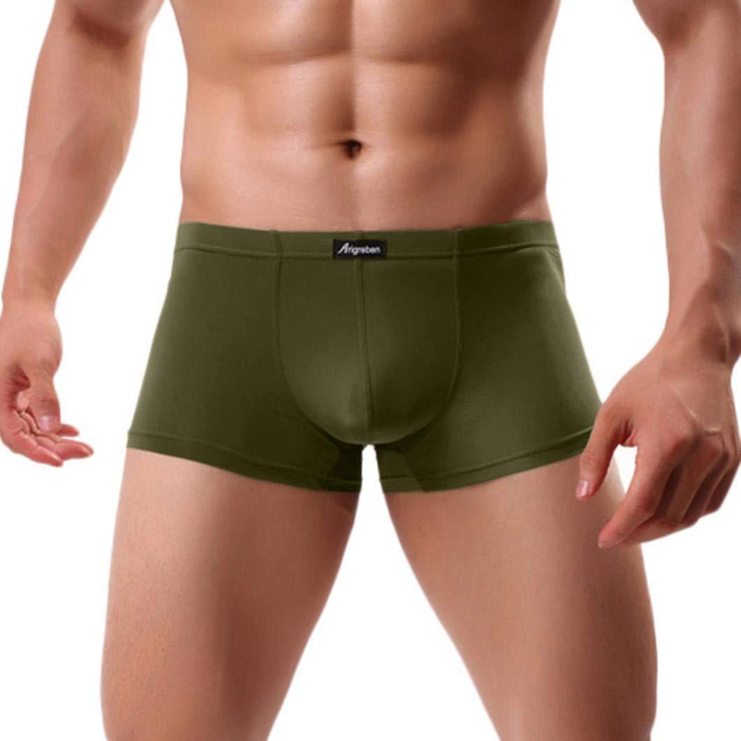 Allywit Men Transparent Underwear Boxer Male Briefs Shorts Bulge Pouch Underpants