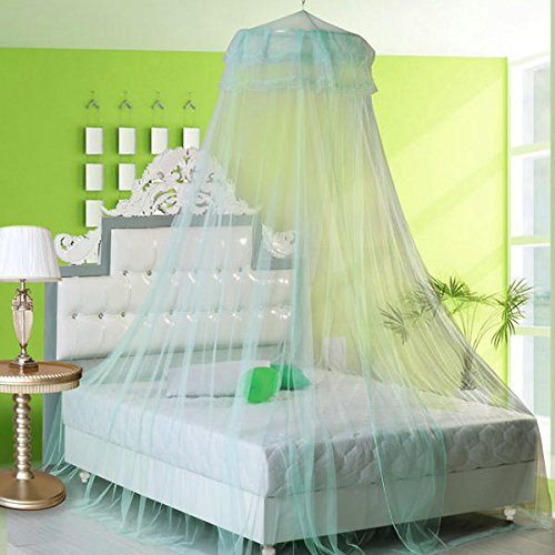 Bonk Earnings - Elegant Lace Hanging Bedding Mosquito Net Dome Princess Bed Canopy Netting - Hump Profit Seam Web Sack Intercourse Take-Home Eff Income Love Laid Reticulation - 1PCs by Unknown (Image #1)